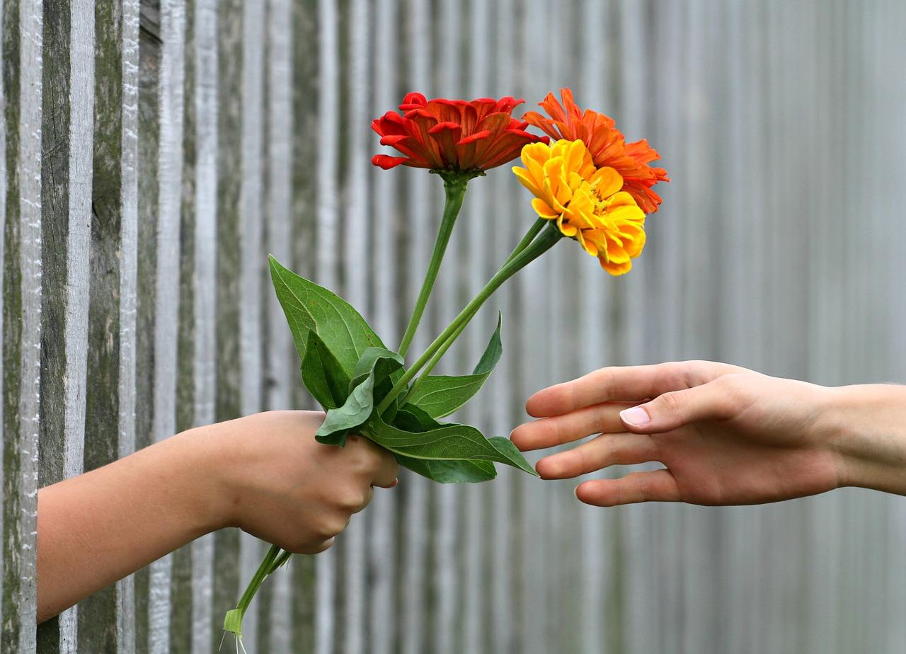Auf dem Bild ist ein Hand·schlag mit Blumen zu sehen. Es ist ein Friedens·zeichen