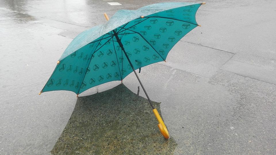Auf dem Bild ist ein Regen·schirm zu sehen